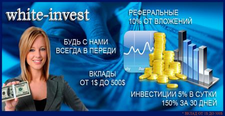 Cкрипт инвестиционного проекта бесплатно